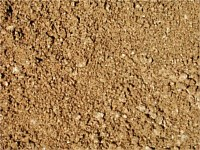 Sands and Soils